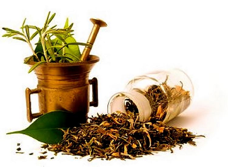 Herbalist's Shop…