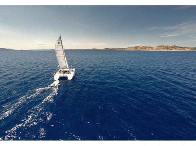 Tour in Catamarano:…